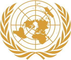 FN - en världsomspännande sammanslutning av 193 stater. Men kan FN göra något?